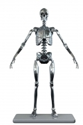 Molecule8 ENDOSKELETON Mark I 1/6 FIGURE