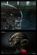 Sideshow BIG CHAP Legendary Scale BUST Alien LSB 1:2
