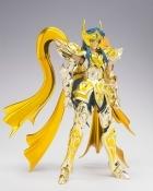 Soul of Gold AQUARIUS CAMUS God BANDAI Saint Seiya