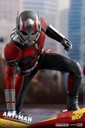 Hot Toys ANT-MAN & The Wasp 1/6 FIGURE
