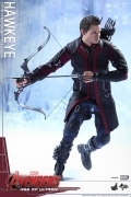 Hot Toys HAWKEYE Age of Ultron AVENGERS 1/6 Figure