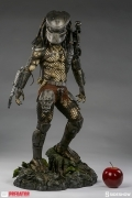 Sideshow PREDATOR Jungle Hunter MAQUETTE 1/4 Statue