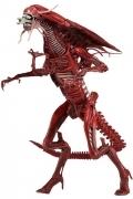 Neca RED QUEEN DLX Aliens Genocide ACTION FIGURE