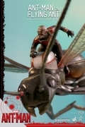 Hot Toys ANT-MAN on FLYING ANT Miniature FIGURE