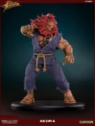Pop Culture AKUMA 10TH ANNIVERSARY Street Fighter 1/4 STATUE