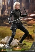 Hot Toys BLACK WIDOW Avengers Infinity War 1/6 FIGURE