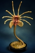 Hollywood Collectibles FACEHUGGER ALIEN Life-size REPLICA Aliens