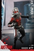 Hot Toys ANT-MAN 1/6 Antman FIGURE Marvel